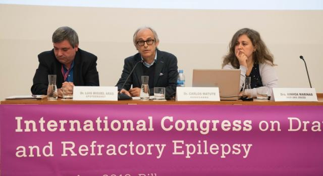 International Congress on Dravet Syndrome and Refractory Epilepsy